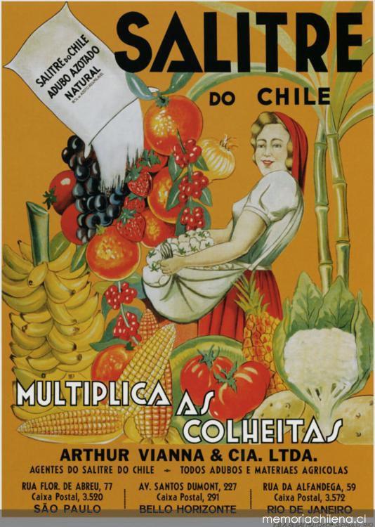 Afiche de Brasil - Memoria Chilena, Biblioteca Nacional de