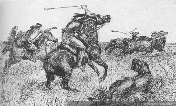 Indios cazando guanacos En primer plano un puma hacia 1830