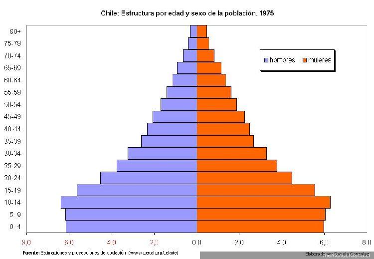 estructura de poblacion por edad: