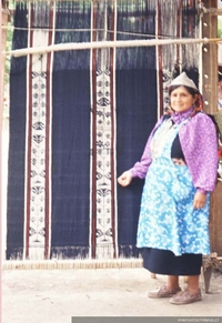 Tejedora con su witral, telar mapuche