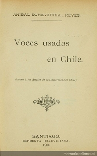 Voces usadas en Chile